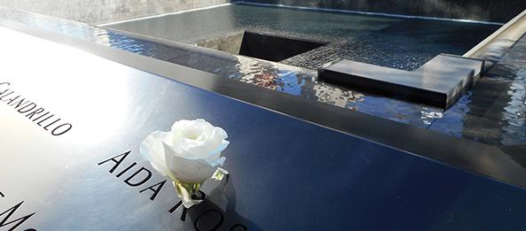 flower at 9-11 memorial