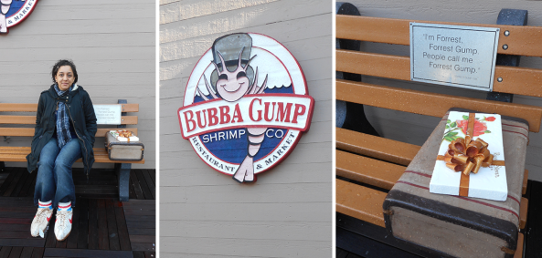 forest gump bench