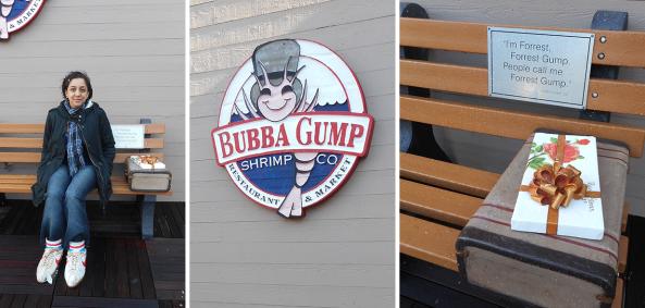 forest gump bench