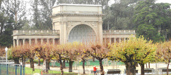 golden gate park 2